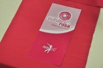 Programação do Outubro Rosa 2014 é lançada na capital